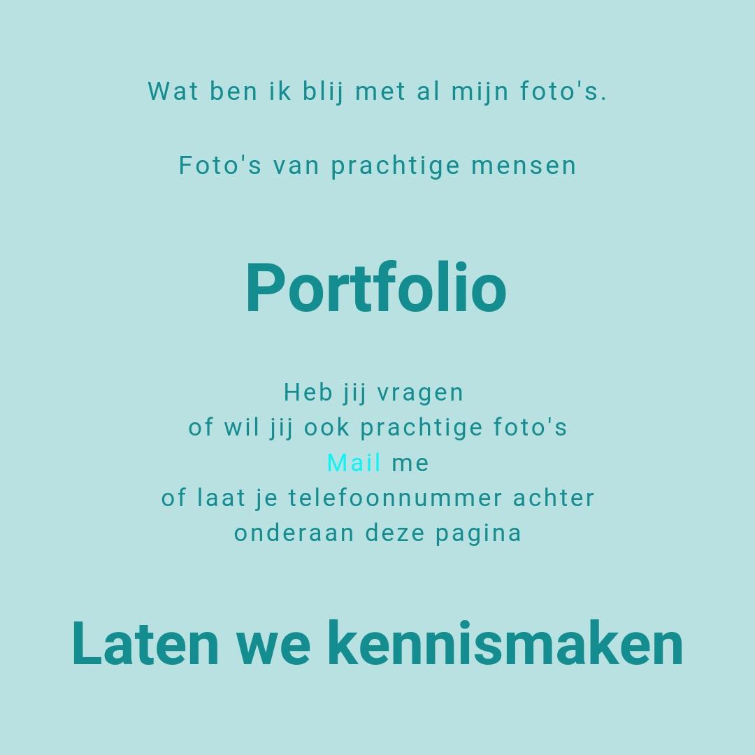 portfolio   laten we kennismaken